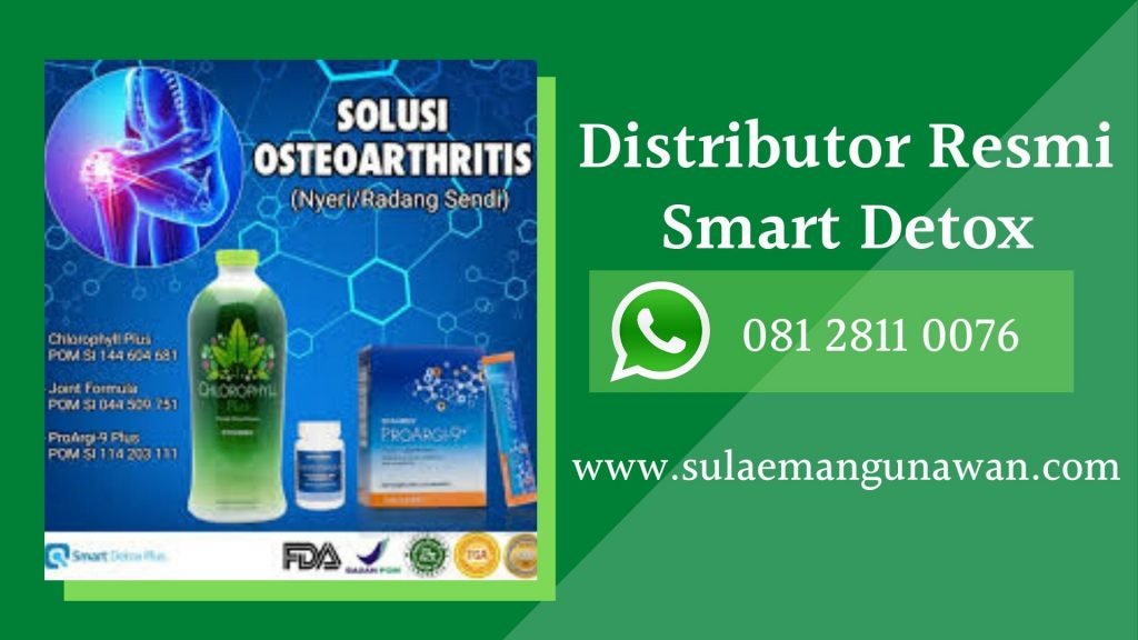 Jual Produk Smart Detox Untuk Kesehatan dan Pelangsing Badan Terpercaya di Pekanbaru